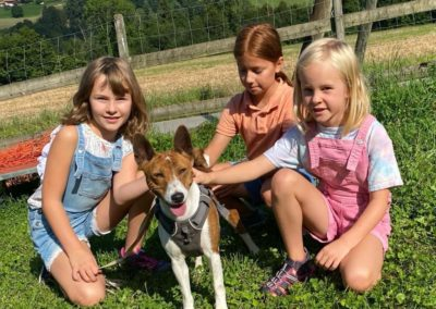 Basenji avec enfants