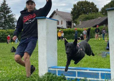 Cours d'agility
